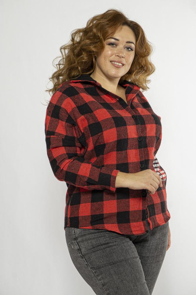 Байковая рубашка с капюшоном 153P2045-1
