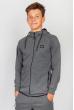 Кофта мужская спортивна 291F011-1 junior серый