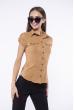 Классическая рубашка 118P001 с коротким рукавом коричневый
