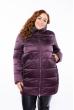 Куртка женская 120PSKL1936 баклажан