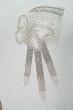Свитер женский 120PNA1405 голубой